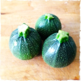 rounded courgettes