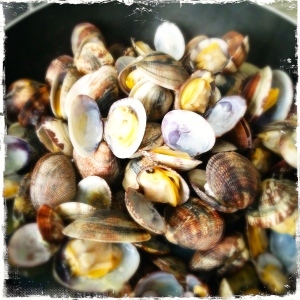 Opened Vongole